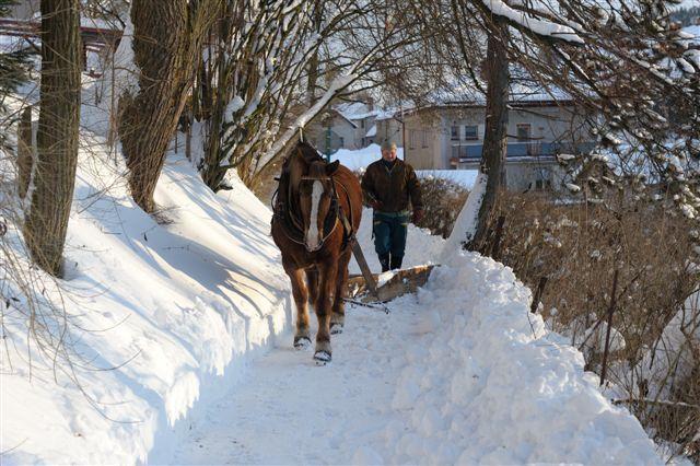 Zimní údržba pomocí koňské síly